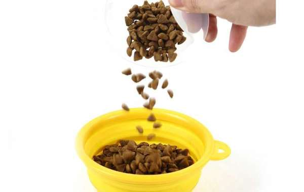 How to Clean a Cat Litter Box in Easy Steps II