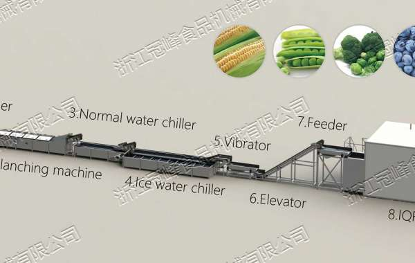 Using Machine to Drying Fruits and Vegetables
